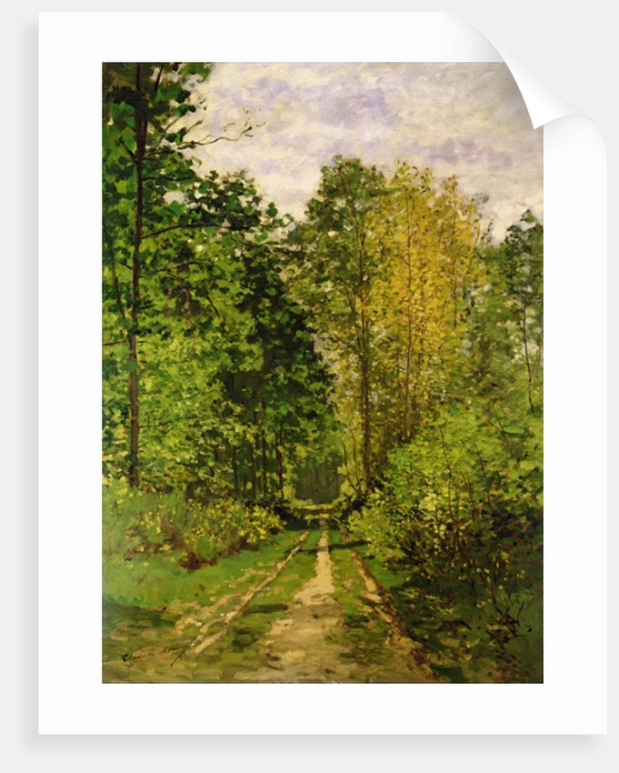 Wooded Path, 1865 by Claude Monet