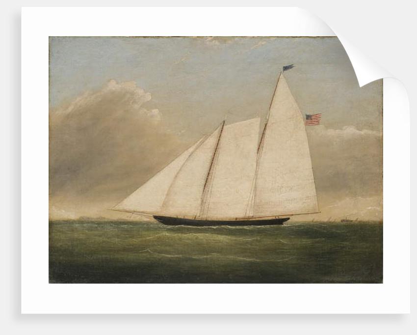 Yacht America by American School