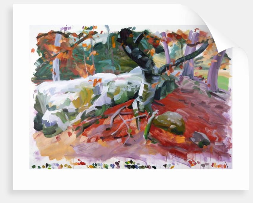 Forêt 36 ,2018 by Olivier Morel