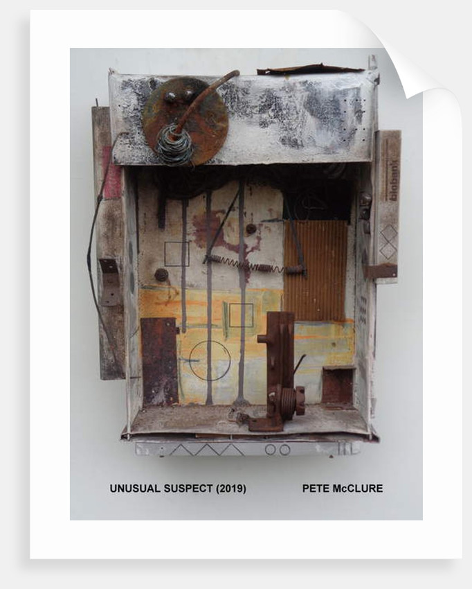 UNUSUAL SUSPECT. 2019 by Peter McClure