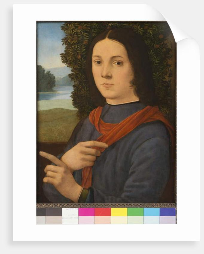 Portrait of a young man, 1490-99 by Lorenzo di Credi