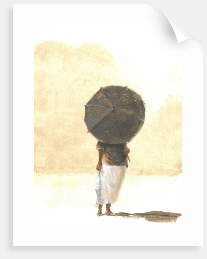Umbrella & Fish 2 by Lincoln Seligman