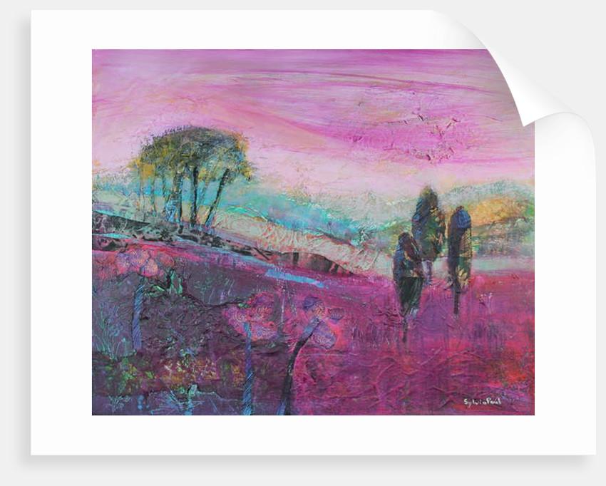 Amethyst Hue by Sylvia Paul