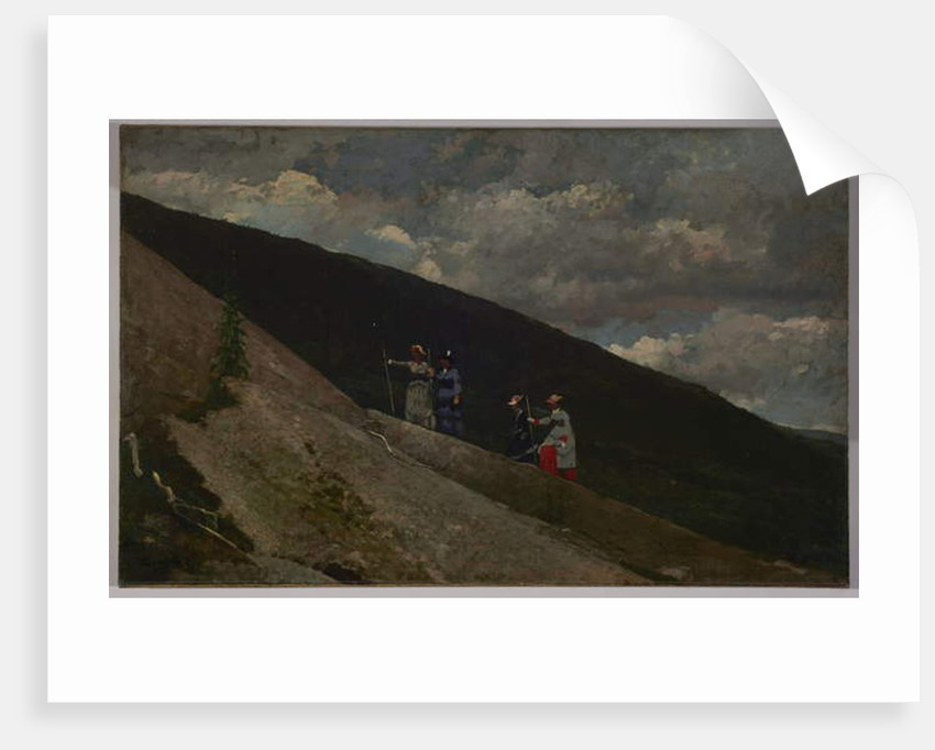 In the Mountains, 1877 by Winslow Homer