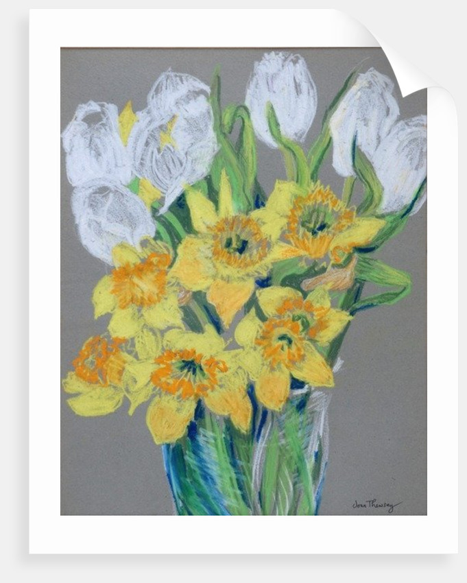 Daffodils and White Tulips by Joan Thewsey