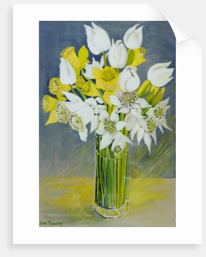Daffodils and white tulips in an octagonal glass vase by Joan Thewsey