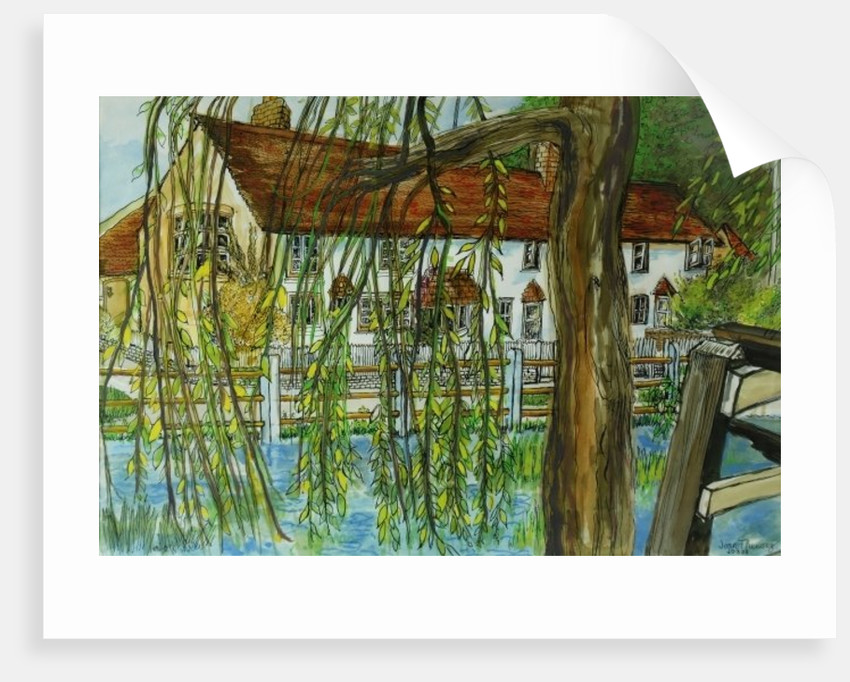 The Pond at Hedgerley by Joan Thewsey