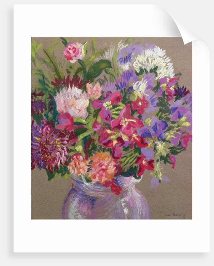 Asters by Joan Thewsey