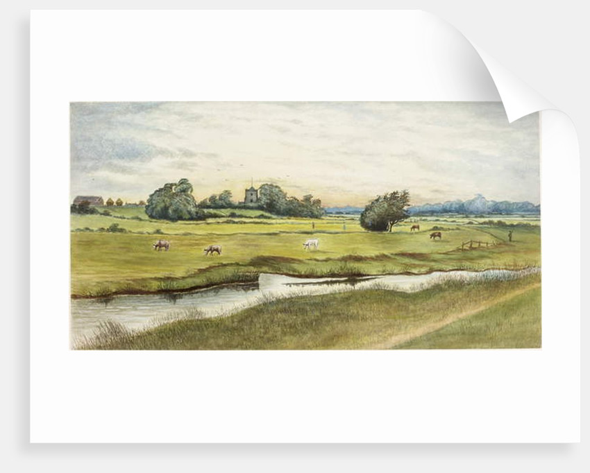 Ryton Meadows by James Henry Cleet