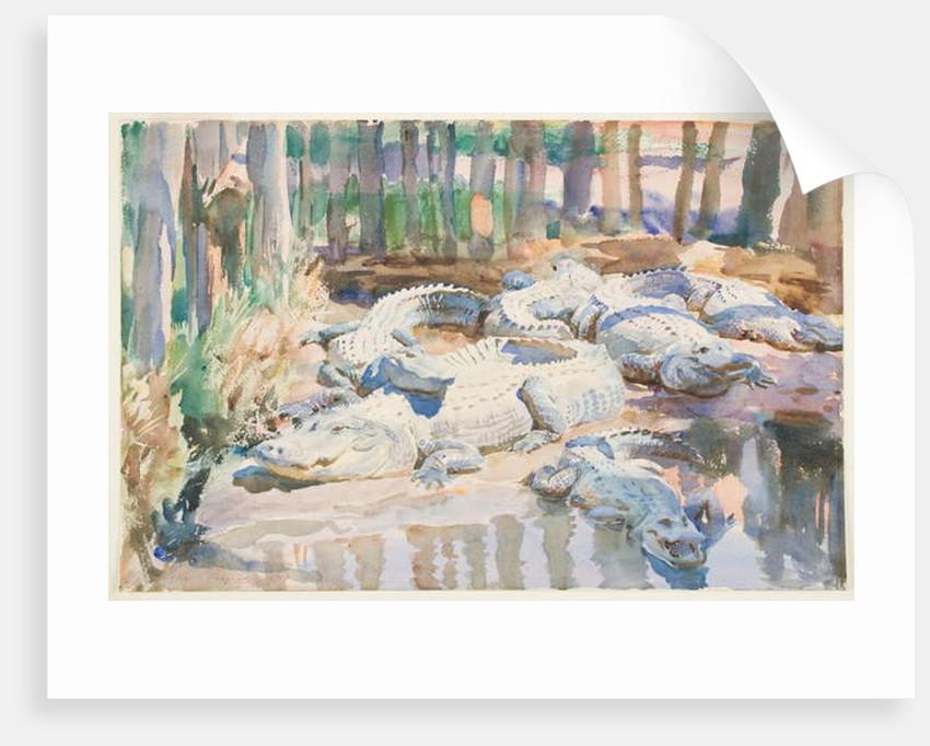 Muddy Alligators, 1917 by John Singer Sargent