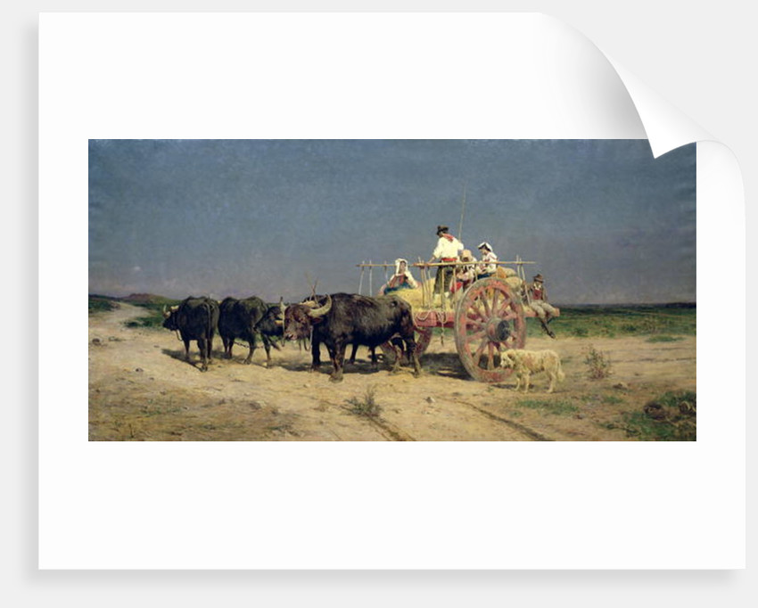 Wagon with Buffalo by the Beach by Aurelio Tiratelli