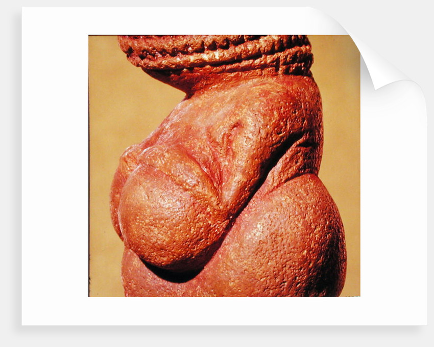 Female figurine known as the Venus of Willendorf by Paleolithic