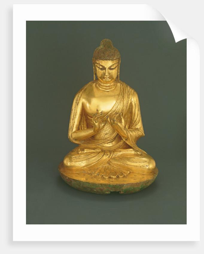 Buddha Vairocana (Dari) by Chinese School