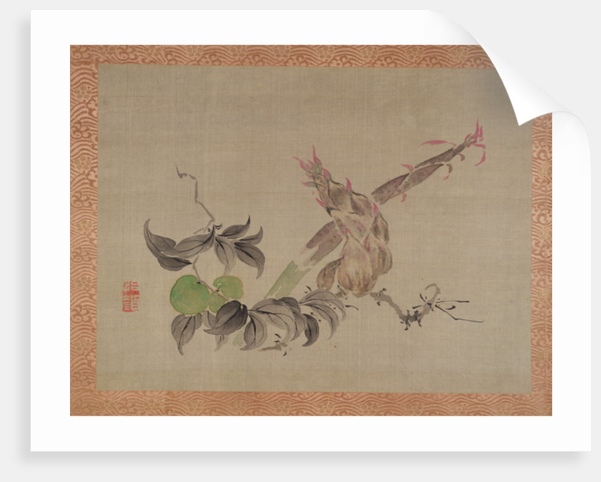 Apple and flowering plant, 1851 by Tsubaki Chinzan