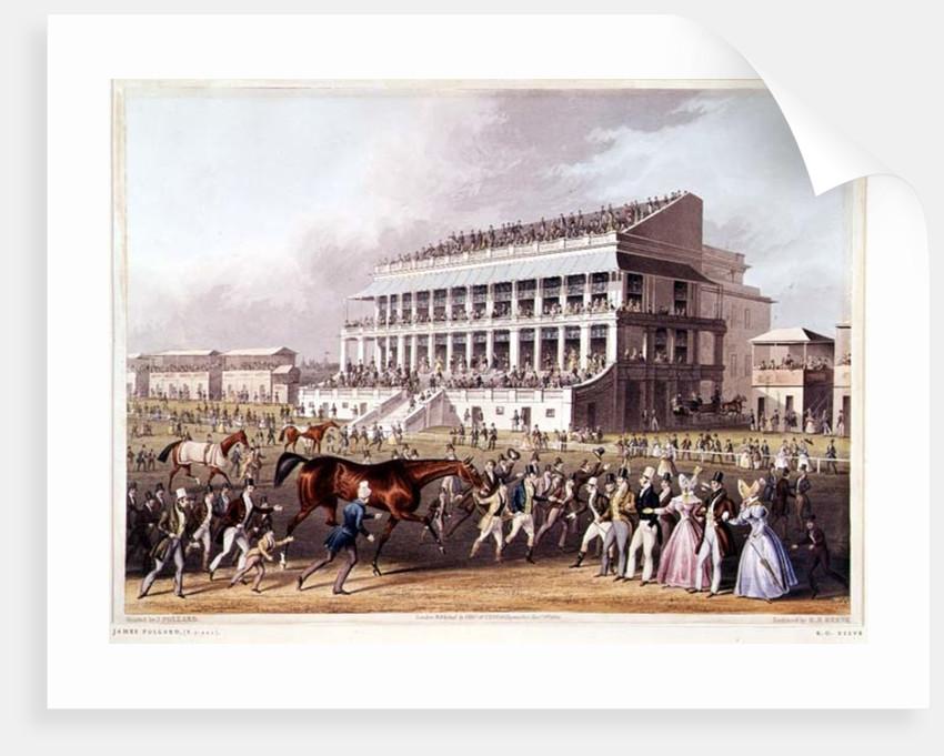 Bay Middleton, Winner of the Derby 1836 by James Pollard