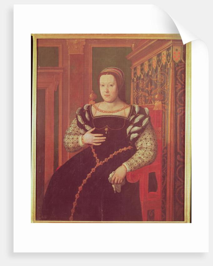 Catherine de Medici by Santi di Tito