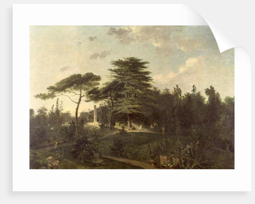 The Cedar of Lebanon in the Jardin des Plantes by Jean-Pierre Houel