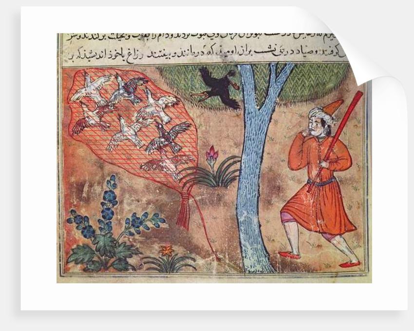 Hunting Birds by Islamic School