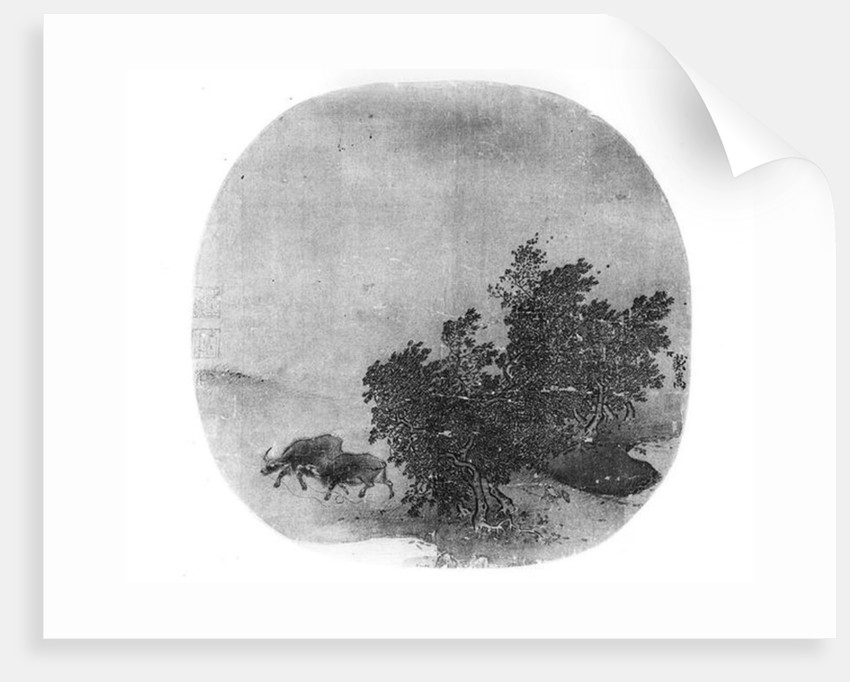 Landscape with water buffalo, Song Dynasty by Chinese School