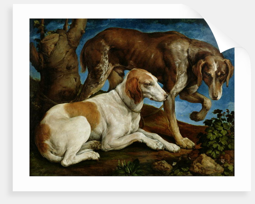 Two Hunting Dogs Tied to a Tree Stump by Jacopo Bassano