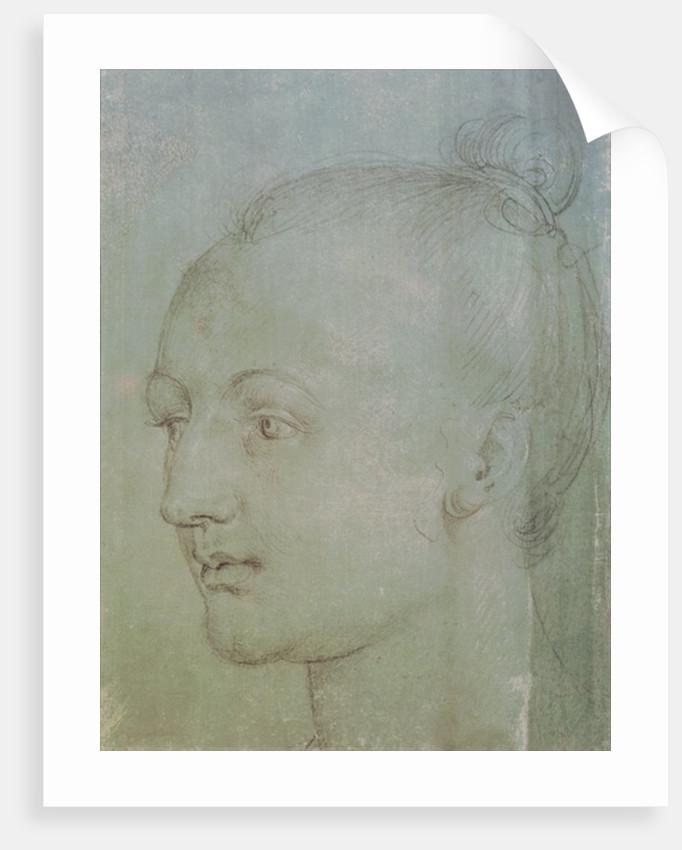 Head of a Young Woman by Albrecht Dürer or Duerer