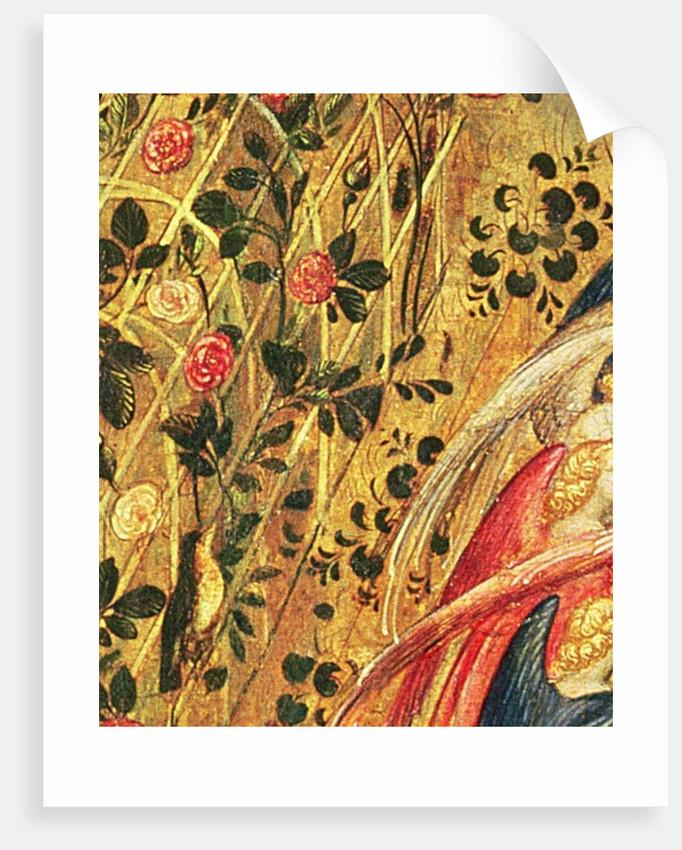 Madonna with a Rose Bush by Stefano di Giovanni da Verona