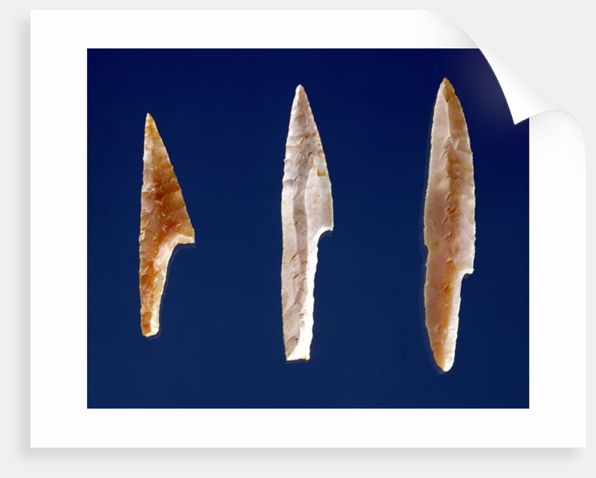 Three serrated points by Prehistoric