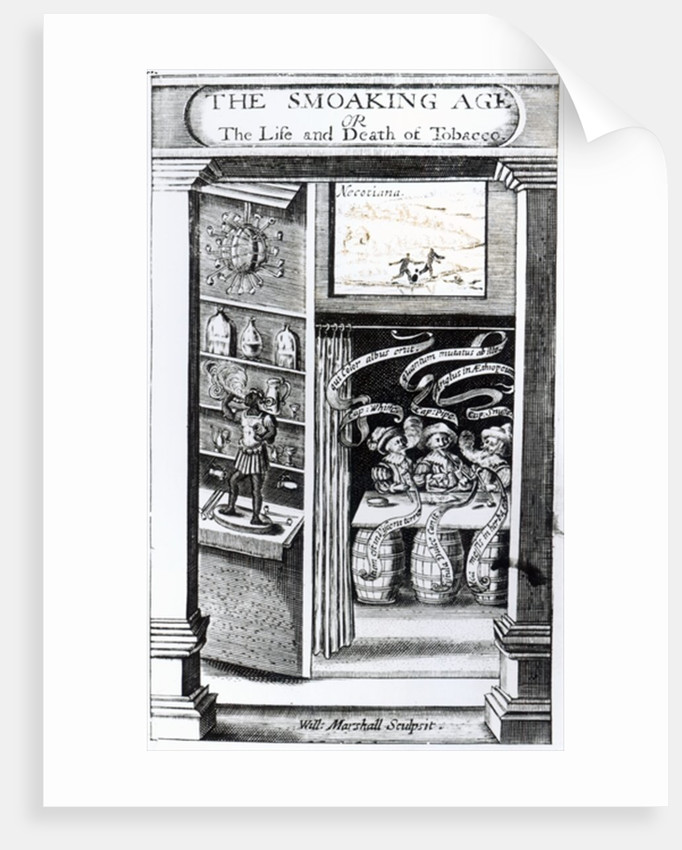 The Smoaking Age or, The Life and Death of Tobacco by English School