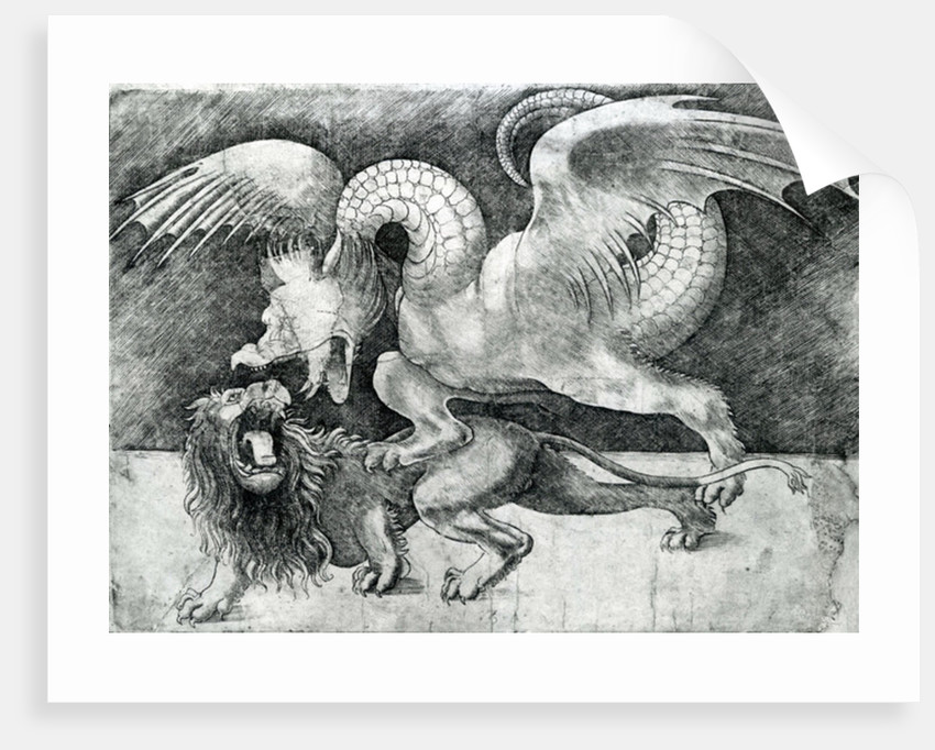 Dragon Fighting a Lion by Andrea Zoan