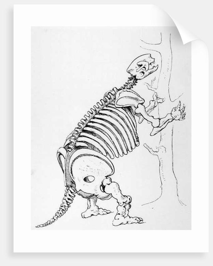 Skeleton of a Mylodon by English School