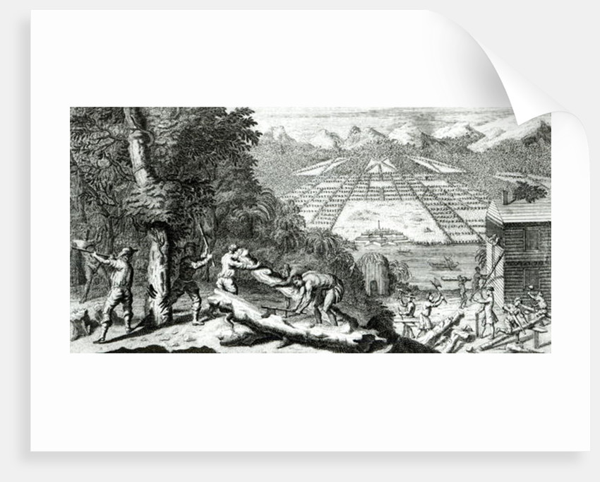 Illustration from 'The Reasons for establishing the Colony of Georgia' by Benjamin Martyn by John Pine