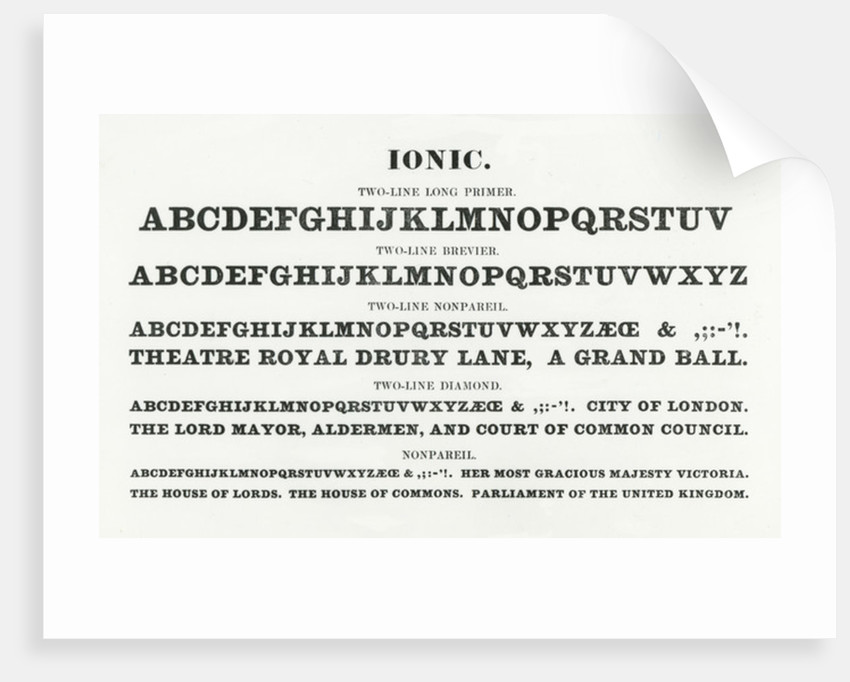 Ionic Typefaces Posters Prints By English School