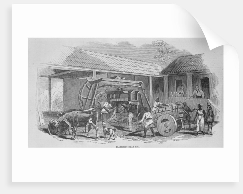 The Sugar Mill by Johann Moritz Rugendas