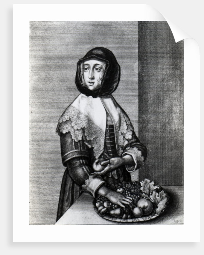 Autumn by Wenceslaus Hollar