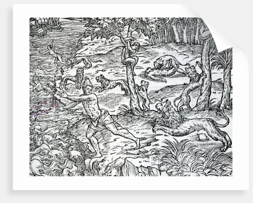 Lions attacking and eating humans by Jean the Younger Cousin