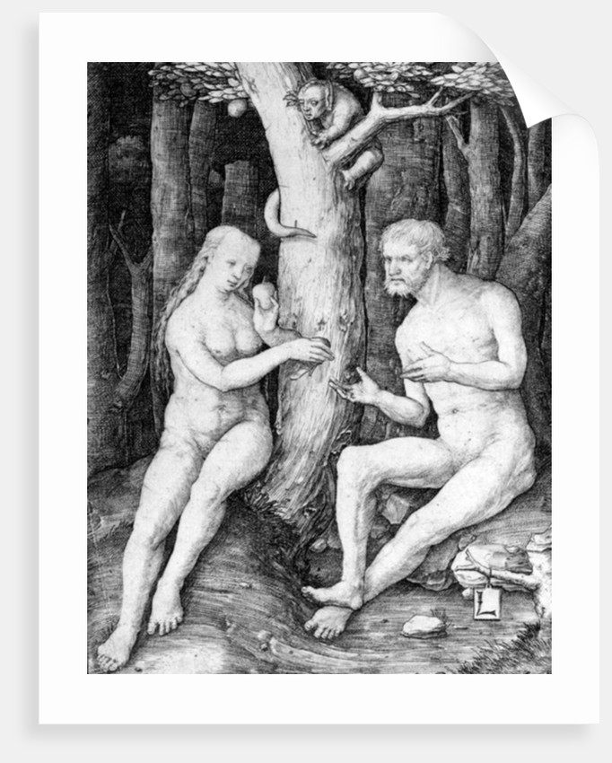 Adam and Eve by Lucas van Leyden