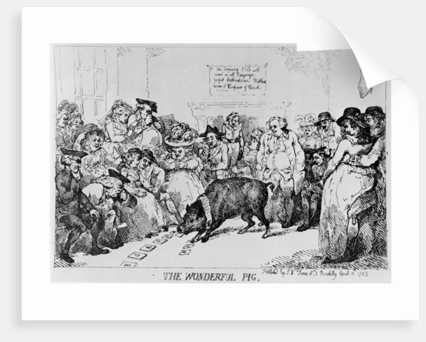 The Wonderful Pig by Thomas Rowlandson