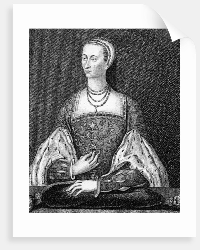 Mary of Guise by English School