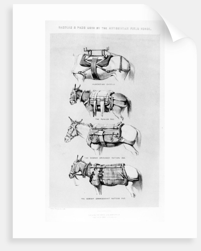 Saddles and Pads Used by the Abyssinian Field Force by Sir Henry James