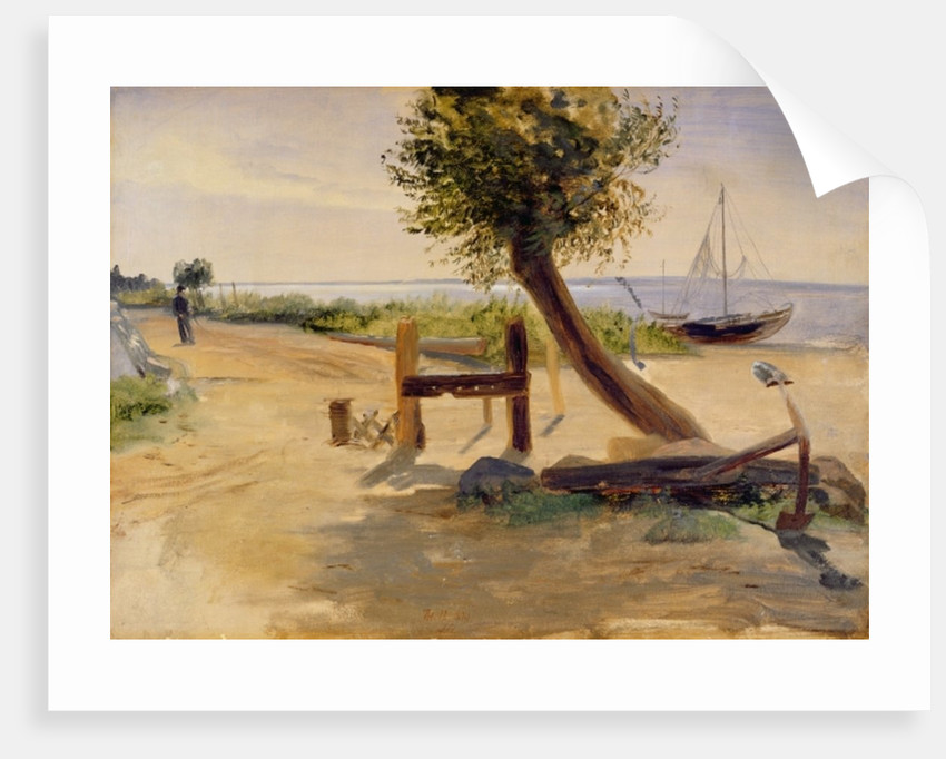 The Banks of the Elbe by Jacob Gensler