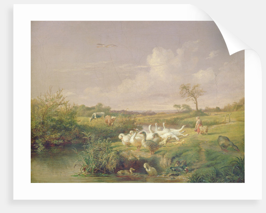 Geese Grazing by Otto Speckter