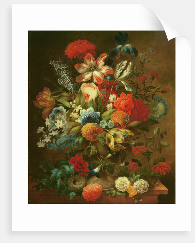 Flower Still Life with Bird Nest by Ottmar the Elder Elliger