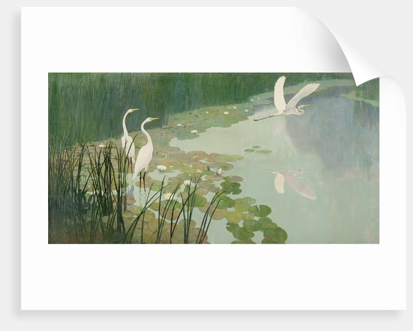 Herons in Summer, 1941 by Newell Convers Wyeth