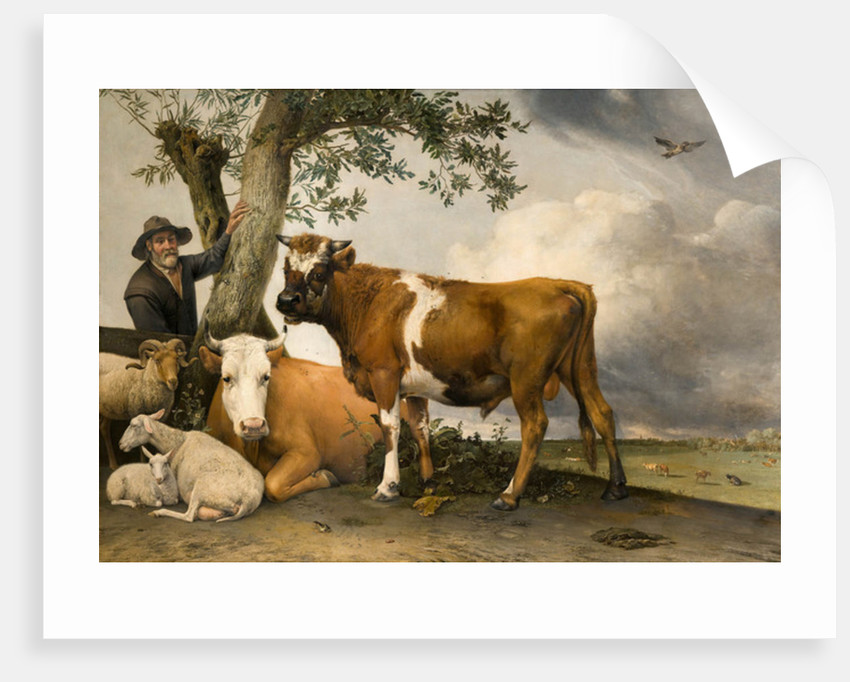 The Bull by Paulus Potter