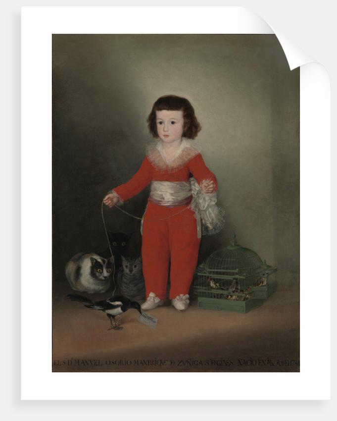 Don Manuel Osorio Manrique de Zuniga by Francisco Jose de Goya y Lucientes