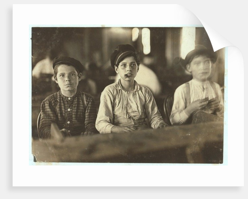 Boys making cigars at Englehardt & Co, Tampa, Florida by Lewis Wickes Hine