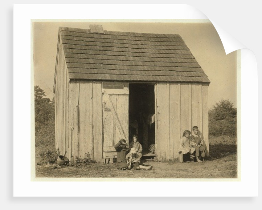 De Marco family shack for cranberry pickers at Forsythe's Bog, Turkeytown, near Pemberton, New Jersey by Lewis Wickes Hine
