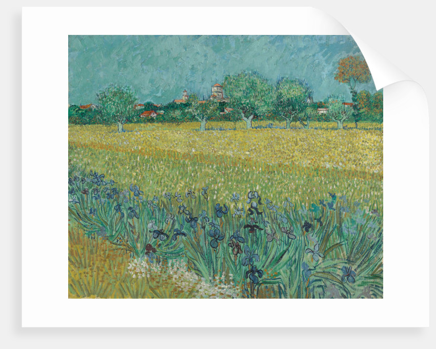 Field with Flowers near Arles by Vincent van Gogh