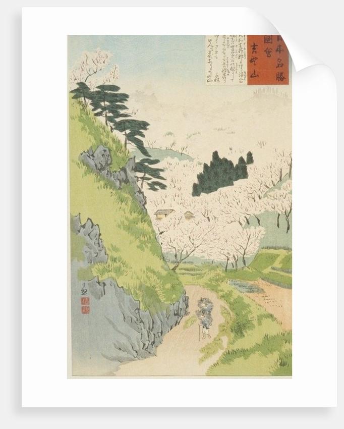 Mt. Yoshino, Cherry Blossoms or Yoshino yama by Kobayashi Kiyochika