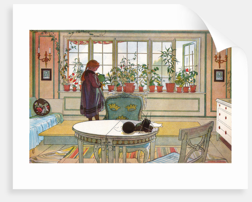 Flowers on the Windowsill by Carl Larsson
